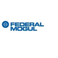 ООО «Федерал-Могул ПауэрТрейн Восток»